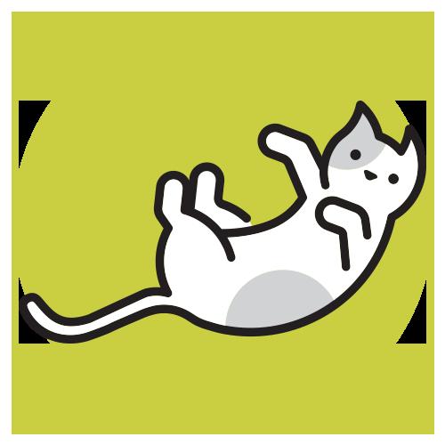 Katte - Elmegaardens frie dyr